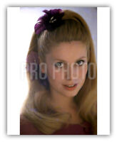 1965 Rare Catherine Deneuve Gorgeous Blond French Actress 8 x 10 Publicity Photo