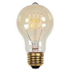 Westinghouse 0413500 - 60 Watt A19 Timeless Vintage Inspired Bulb