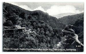 Route through Santa Cruz Mountains to the Big Tree Grove, CA Postcard *6V(2)5