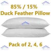 New Luxury Hotel Quality Duck Feather & Down Pillows 85% /15% Pack Of 2 4 & 6