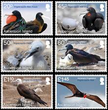 Ascension Is 2013 Return of the Frigatebird 6v SG 1176/81 MNH
