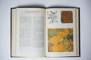 Botanical Book, Vintage Illustrated, herbaceous plants, Flowers, drug plant