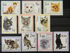 - Polen Poland 1964 Mi. Nr. 1475-1484 ** postfrisch MNH Katzen cats