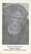 Jimmie Chimpanzee Monkey Jungle So of Miami Fl nice postcard not postally used