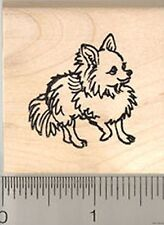 CUTE Long Haired Chihuahua Rubber Stamp WM D8110 dog