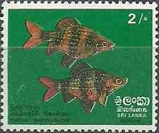Timbre Poissons Sri Lanka 449 ** lot 17032
