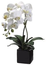 "20"" Artificial Phalaenopsis Orchid Plant in Ceramic Pot, White Cream, NIB, Sale!"