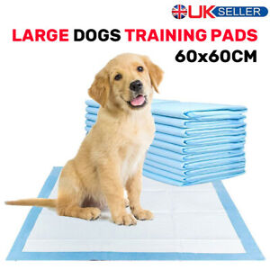 LARGE HEAVY DUTY DOG PUPPY ABSORBENT TRAINING PADS FLOOR TOILET WEE MATS 60x60CM