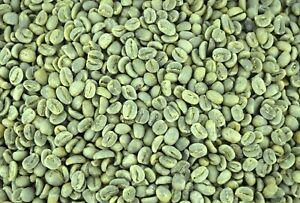 5 LBS HONDURAS HONDURAN FRESH UNROASTED GREEN COFFEE BEANS - ARABICA