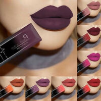21 Colors Waterproof Longue Durée Mat Rouge à Lèvres Beauté Maquillage Lipstick
