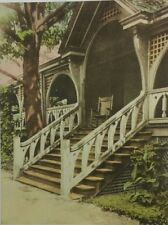 Rare! Wren's Nest Harris Remus Tulip Poplar Tree Atlanta Vintage Postcard A4