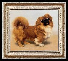 Pekingese Dog Portrait Miniature Dollhouse Picture