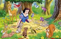 Snow White Iron-On T-Shirt Transfer w//FREE Personalization