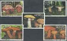 Timbres Champignons Guyana o lot 5917