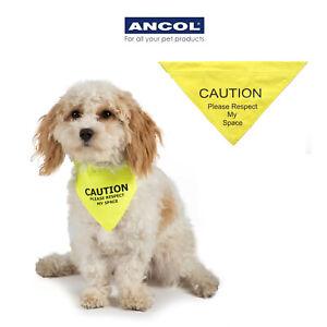 Ancol Hi Vis Warning Dog Bandana Yellow Nervous Shy Reactive Puppy Training