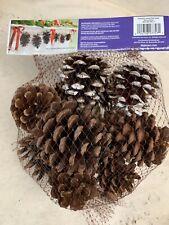 Scented Pine Cones 3 Dry Quarts