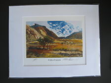 """Rob Tuvell """"Calico Canyon"""" Signed Original Painting Red Rock Canyon NV"""