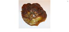 Natur Roh Bernstein Raw Amber 122,14 Gr
