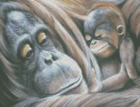 Cross Stitch Chart - Kit Orangutan Mum and Baby