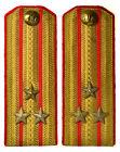 M46 Shoulder Straps Сolonel of Coastal Units of the Navy USSR, Rare (3808)