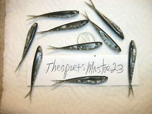 "30-2 1/4""crappie bass-walleye-tails-minnow-grubs-lure-lot-drop shot fishing jigs"