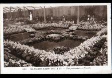 PARIS I° / Ets VILMORIN-ANDRIEUX GRAINETIER / PRESENTATION FLORALE en 1920-1930