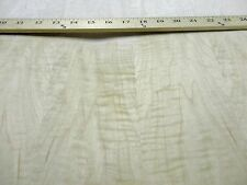 """Curly Figured Maple wood veneer 24"""" x 48"""" with paper backer 1/40th"""" thick """"AA"""""""