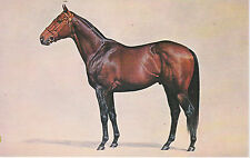 *GALLANT MAN - THOROUGHBRED RACE HORSE POSTCARD - PAINTING ARTIST J M SLICK