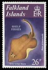 "FALKLAND ISLANDS 338 (SG416) - Grey-tailed Skate ""Raja griseocauda"" (pa20631)"