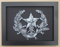Large Scale Framed CAMERONIANS Badge Plaque