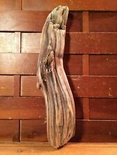 "Beautiful 11"" DRIFTWOOD Piece Art Terrarium Taxidermy Aquarium Beach Wood DECOR"