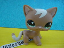 ORIGINAL Littlest Pet Shop  Short Hair Cat  # 1170