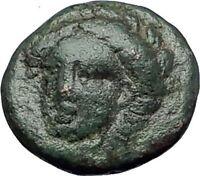 GRYNION or Gyrneion Aeolis 306BC Apollo Shell RARE Ancient Greek Coin i60914
