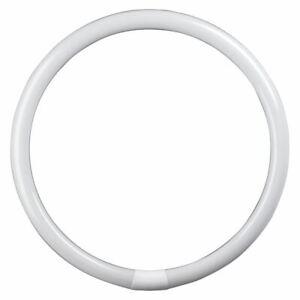 Crompton T9 G10q Round Circular Fluorescent Tube, 60w 400mm 830 Warm White 3000k