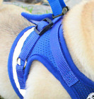 Pet Mesh Soft Harness With Leash Small Animal Vest Lead for Hamster Rabbit Bu