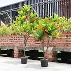 Large 100cm 125cm Artificial Croton Tree Plants Home Office Decor Garden Faux UK