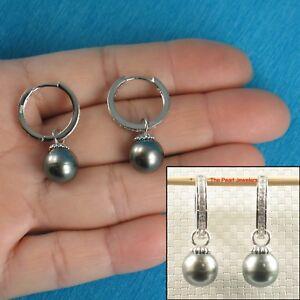 10mm Genuine Tahitian Black Pearl  C Hoop Dangle Earrings TPJ