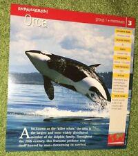 Endangered Animals Card - Mammal - Orca