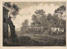 """HOLLANDE PAUL POTTER """" PAYSAGE AVEC VACHES """" GRAVURE ENGRAVING 1862"""