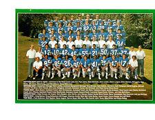 1981 SEATTLE SEAHAWKS TEAM  8X10 PHOTO  FOOTBALL NFL