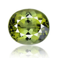 Flawless Tourmaline 7.82ct aaa green color 100% natural earth mined Mozambique