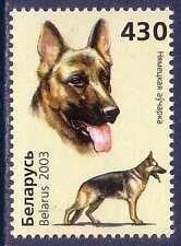 German Shepherd Dogs Belarus MNH stamp 2003