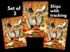 3 Avanti funny Thanksgiving greeting cards-CHIPMUNKS WITH FORK-SPOON-SILVERWARE photo