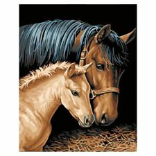 Diy Oil Painting by Numbers -Horses- PBN Kit for Adults Girls Kids White Ch T8N5