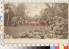 Battersea Park, Subtropical Garden vintage postcard London postmark 1904