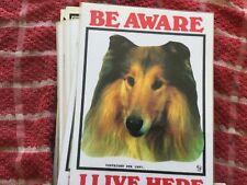 """Lassie Perro /""""Yo vivo aquí/"""" Letrero De Metal Calidad Premium Perro señal de advertencia Rough Collie"""