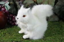 White Squirrel Real Size Realistic Taxidermy Figurine Stuffed Furry Animal