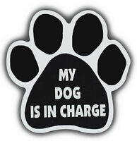 Dog Paw Shaped Magnets: MY DOG IS IN CHARGE | Cars, Trucks, Refrigerators