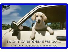 Happy Dog Labrador Retriever Refrigerator / Tool Box  Magnet Gift Card Insert