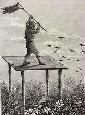 Turquie Anatolie Cilicie paysan gravure sur acier 1890 gravée par Canedi TÜRKIYE